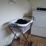 The Washing Trolly